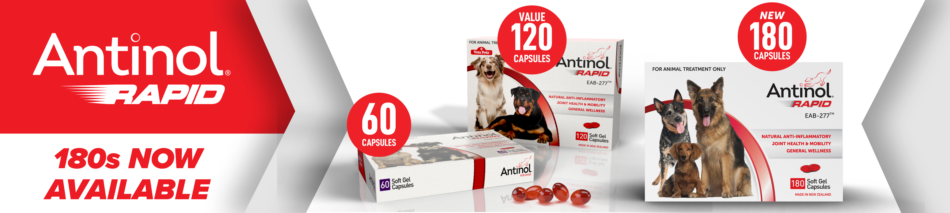 Cenvet-Website-Antinol-180s